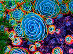 Candyland Cactus Garden by KittenDiotima