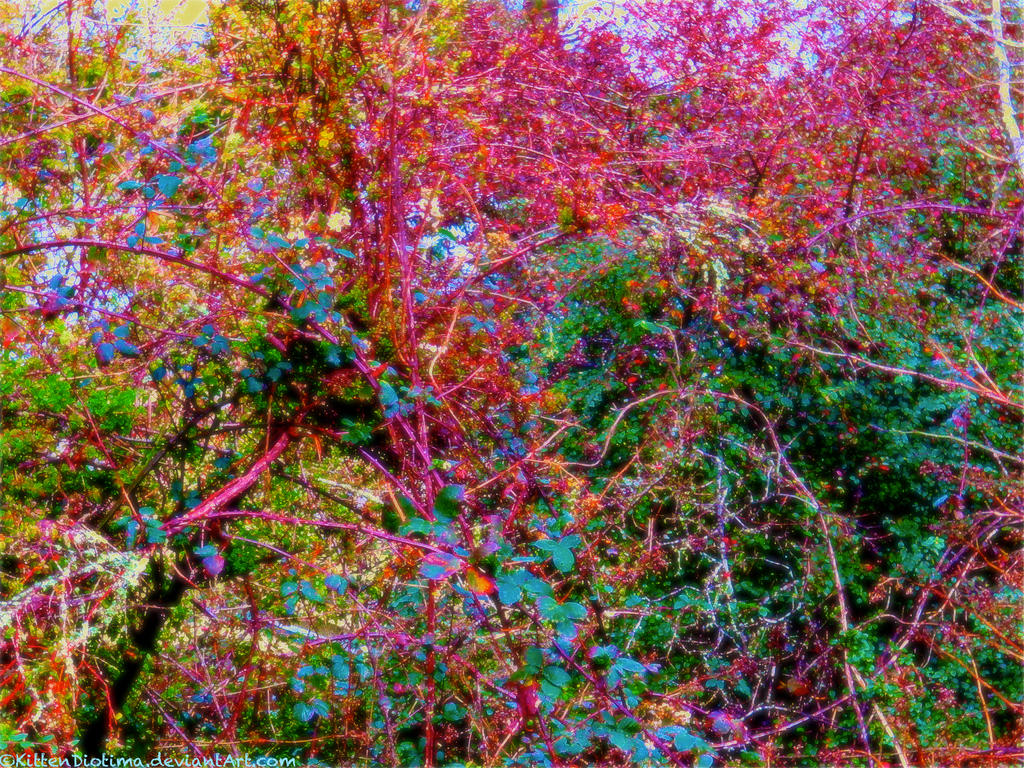 Artist Feeling Natural Disasters Qualitative