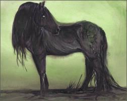 Kelpie - black 2 by estellea