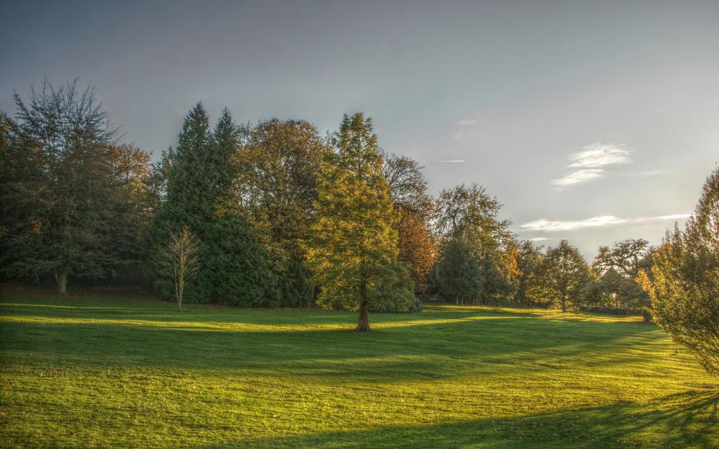 Tales from Hampstead Heath 6 by Isyala
