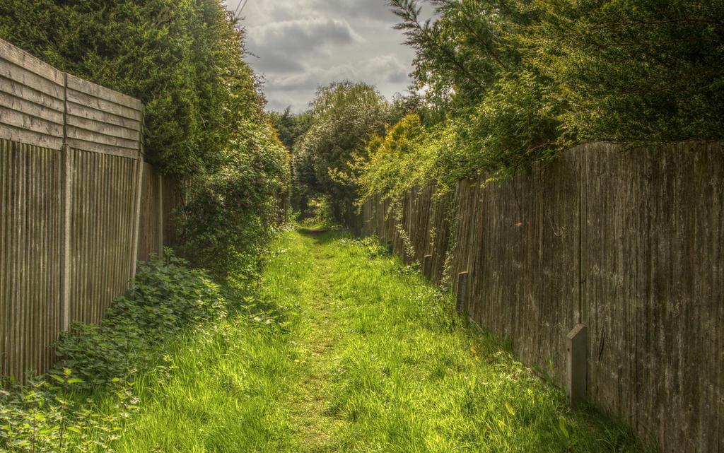 Sunday stroll by Isyala