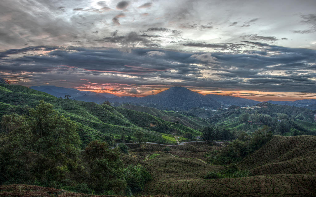 Valley of the Four Winds by Isyala