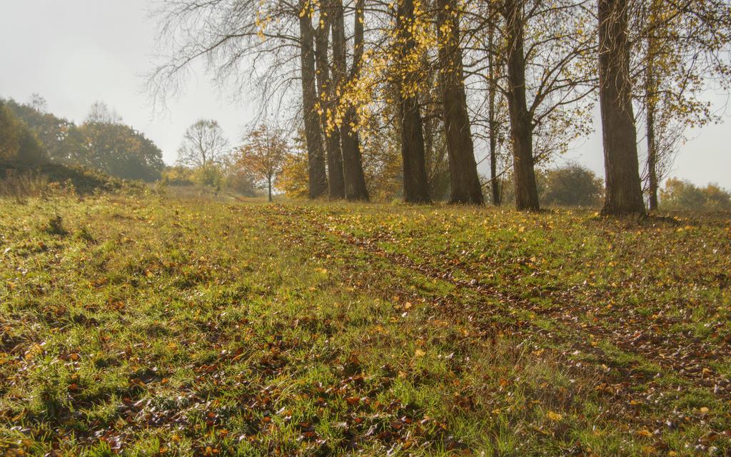 The wonderful borough of Hillingdon XI by Isyala