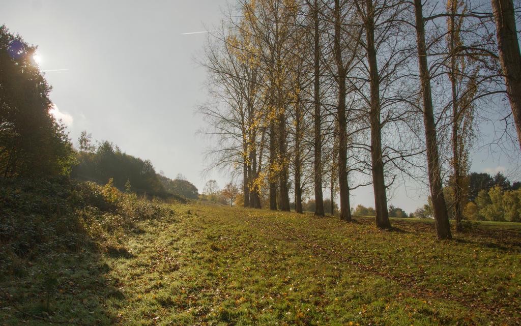 The wonderful borough of Hillingdon X by Isyala