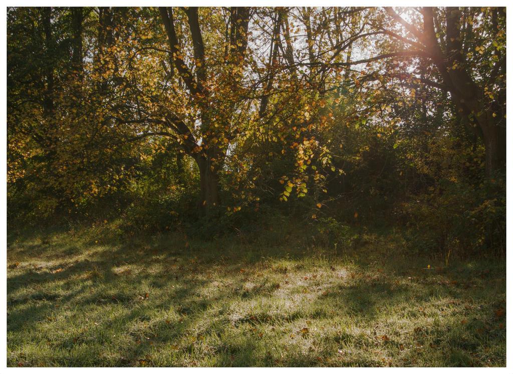 The wonderful borough of Hillingdon IX by Isyala