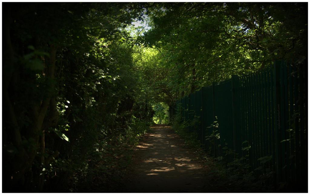 Shadowy walk by Isyala