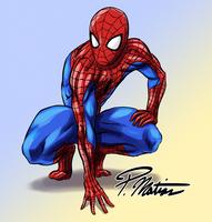 Spider-Man by BW-Straybullet