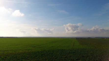 Landscape - 01