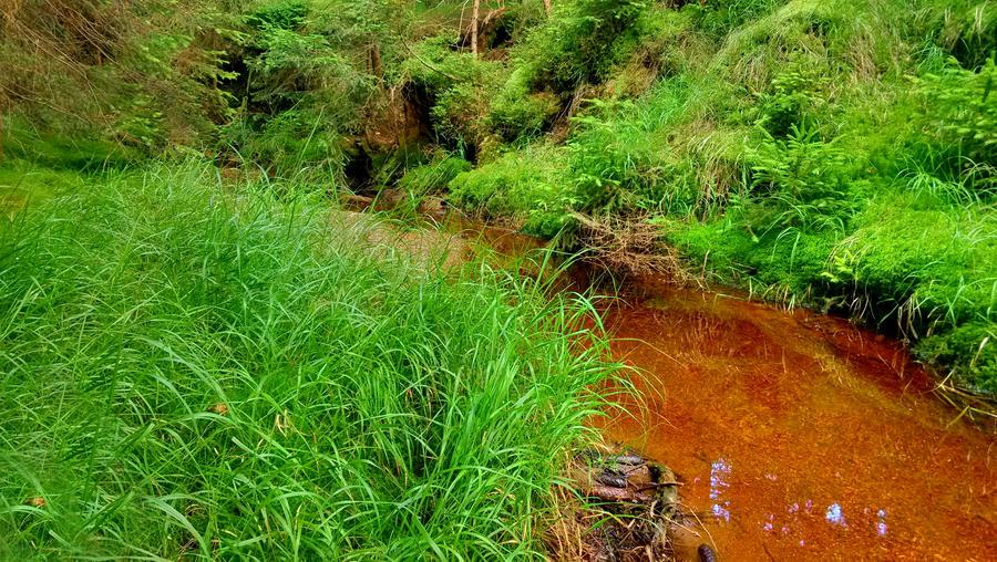 Stream, Rejviz, Czech republic by JiriBobalik