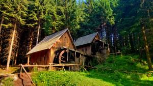 Zlatorudne mlyny, Zlate hory, Czech republic by JiriBobalik