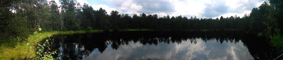 Pano lagoon, Rejviz, Czech republic by JiriBobalik