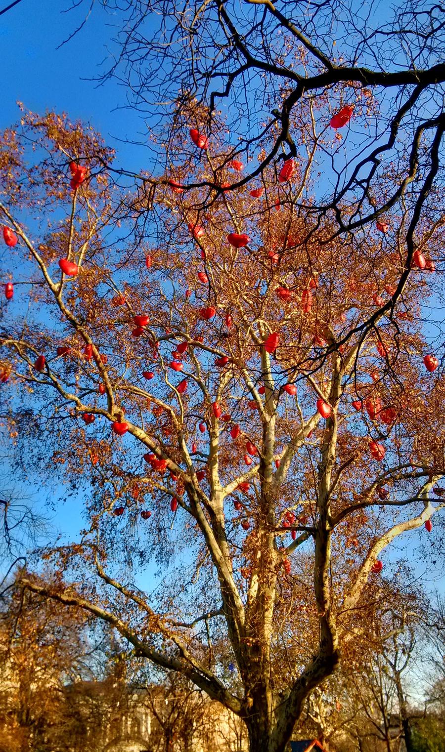 Tree of Love, Wien, Austria by JiriBobalik