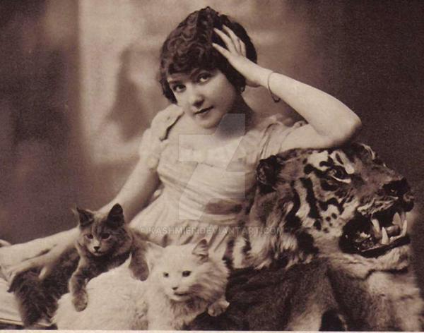 Cat Woman by kashmier