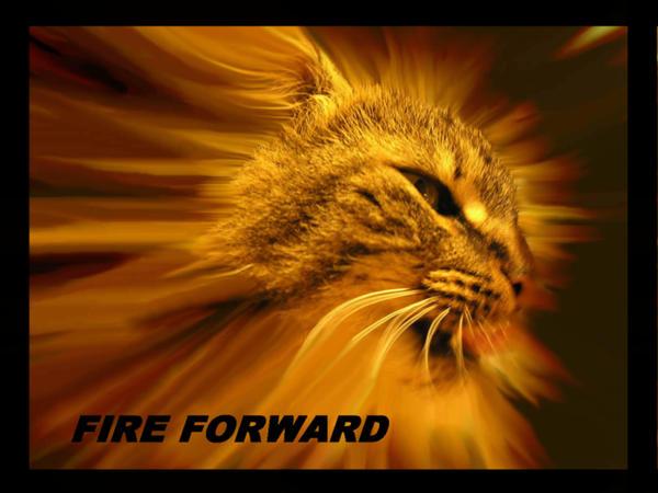 FIRE FORWARD Motivation