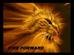 FIRE FORWARD Motivation