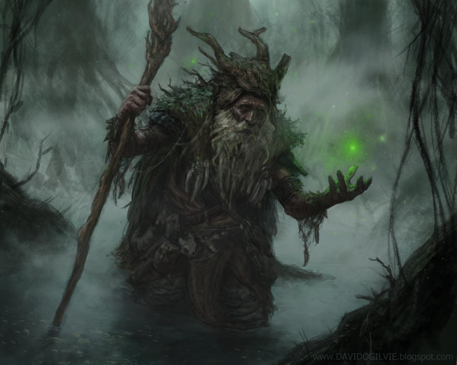 Swamp Elder by ogilvie