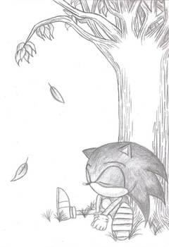 Sleeping Sonic