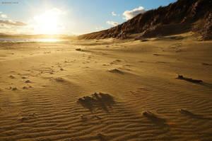 Tasmanian Beaches 10 by Brakawolf