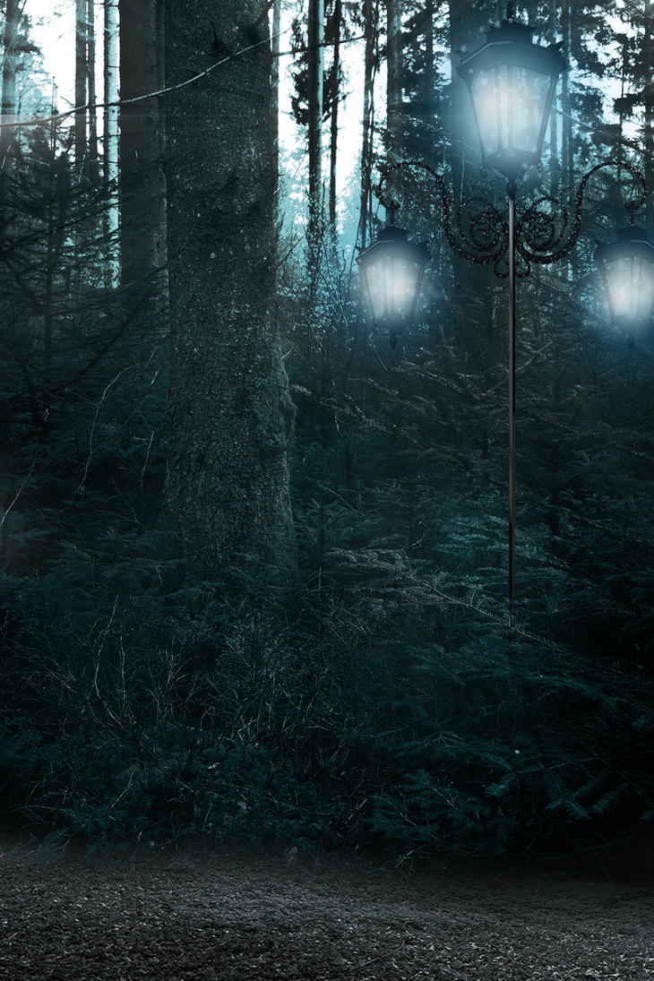 premade background dark forrest by H-stock