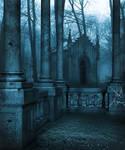 premade background dark forrest 2