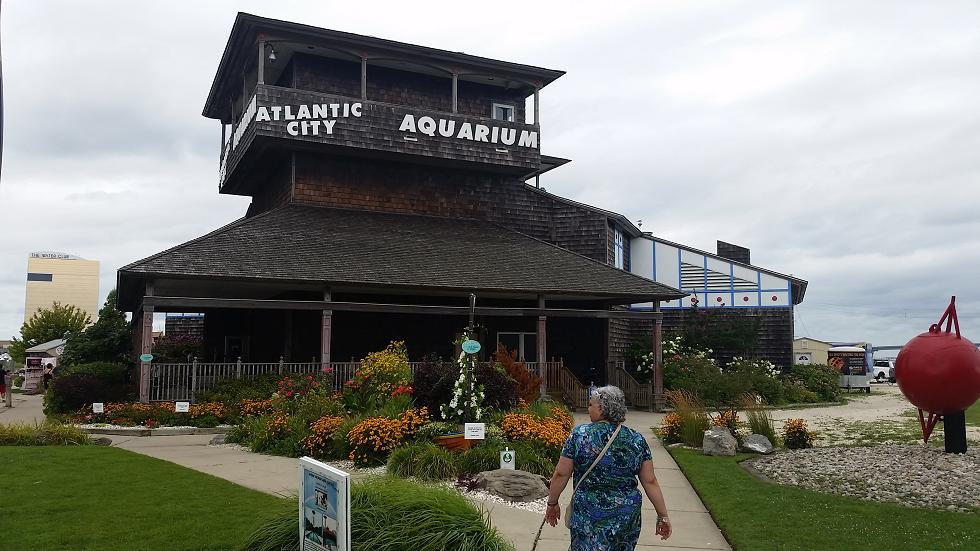Atlantic City Aquarium By Vargvast On Deviantart