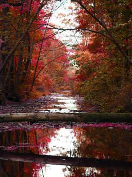 Colored Stream