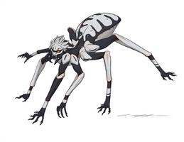 Julycanthropy - Stegodyphus Bicolor