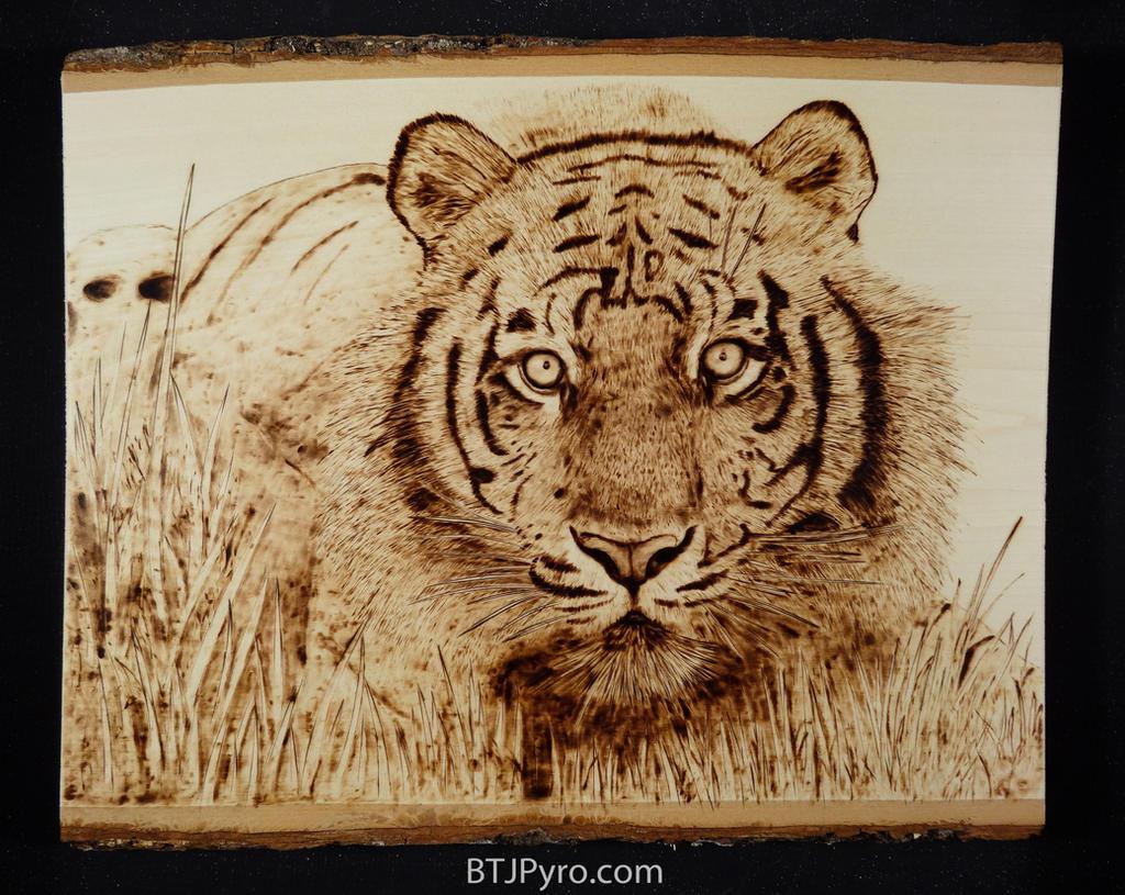 Tiger wood burning by brandojones on DeviantArt