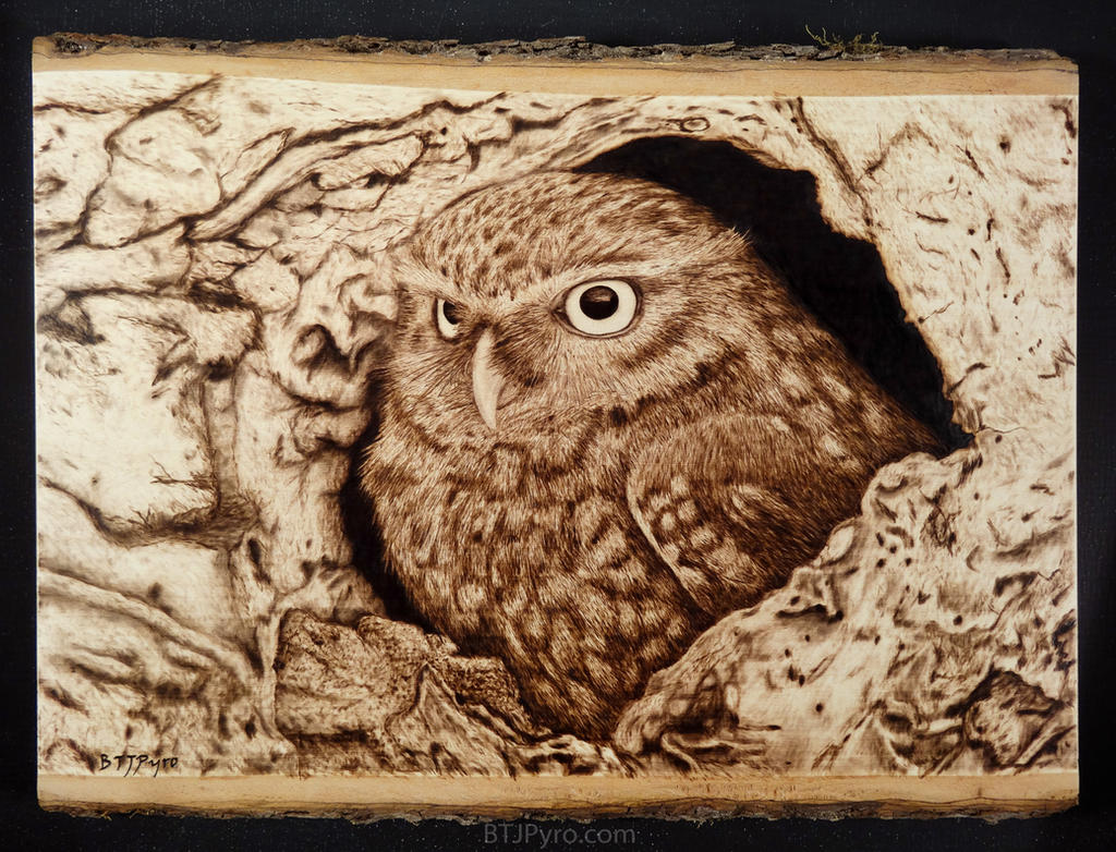 Owl - woodburning by brandojones on DeviantArt