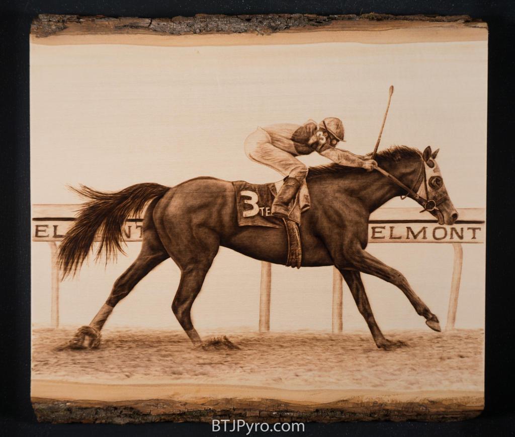 1980 Belmont Race Horse - Woodburning by brandojones