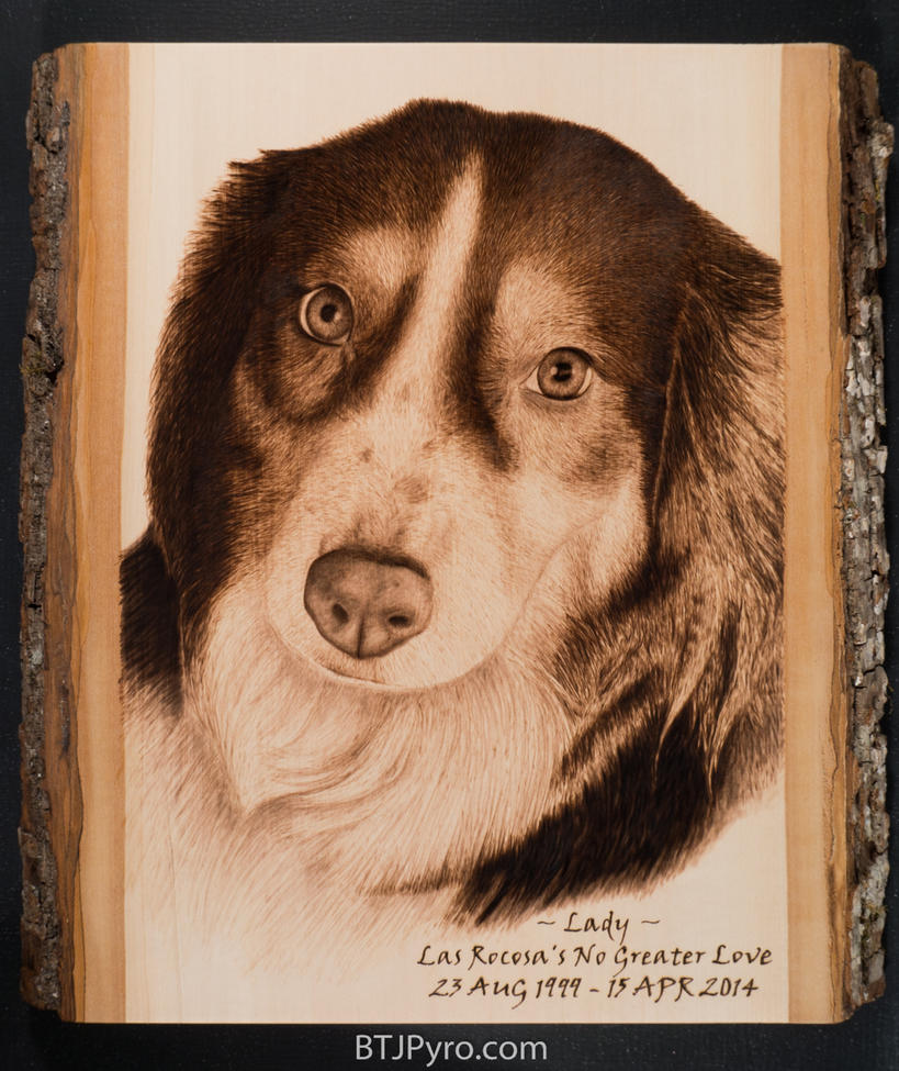 Dog Memorial Portrait - Handcrafted Woodburning by brandojones