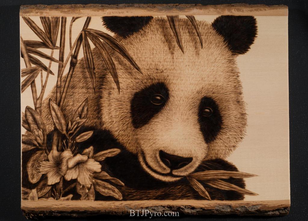 Pyrography portrait of a panda bear by brandojones