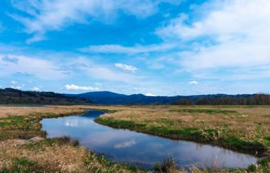 Gibbons Creek Wildlife Trail