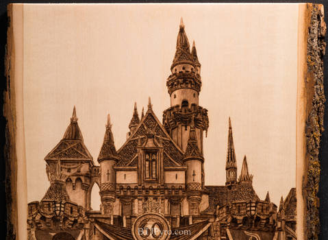 Pyrography of the Disneyland castle