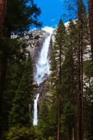 Yosemite National Park #2 by brandojones