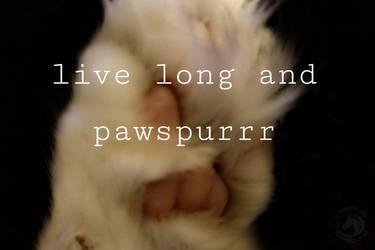 Raise a paw