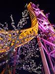 Rollercoaster blossom