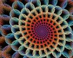 Spiral Paranoia