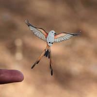 Scissor-tailed flycatcher - Paper cut birds by NVillustration