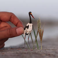 Saddle-billed Stork - Paper cut birds by NVillustration