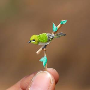 Oriental White-eye - Paper cut birds