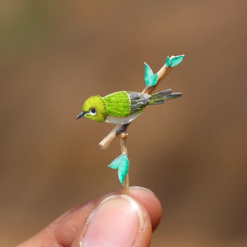 Oriental White-eye - Paper cut birds by NVillustration