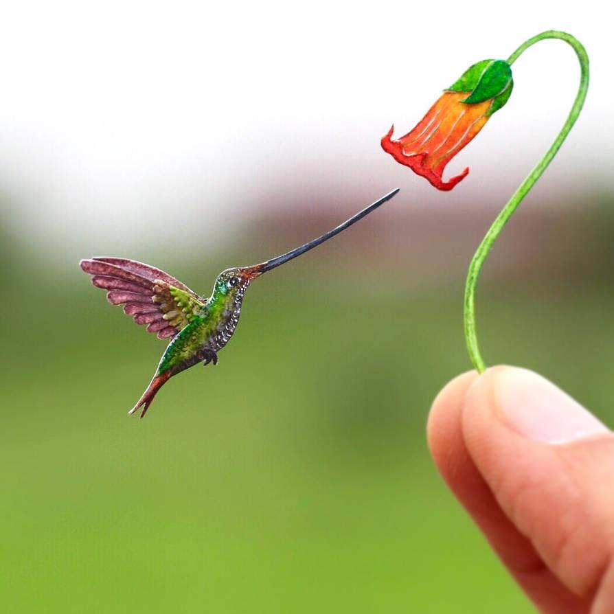 The Sword-billed Hummingbird - Paper cut birds by NVillustration