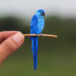 Hyacinth Macaw - Paper cut birds