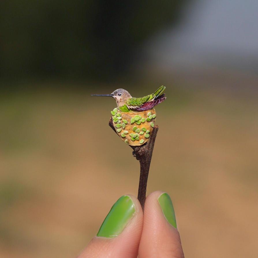 Anna's Hummingbird  - Paper cut birds by NVillustration