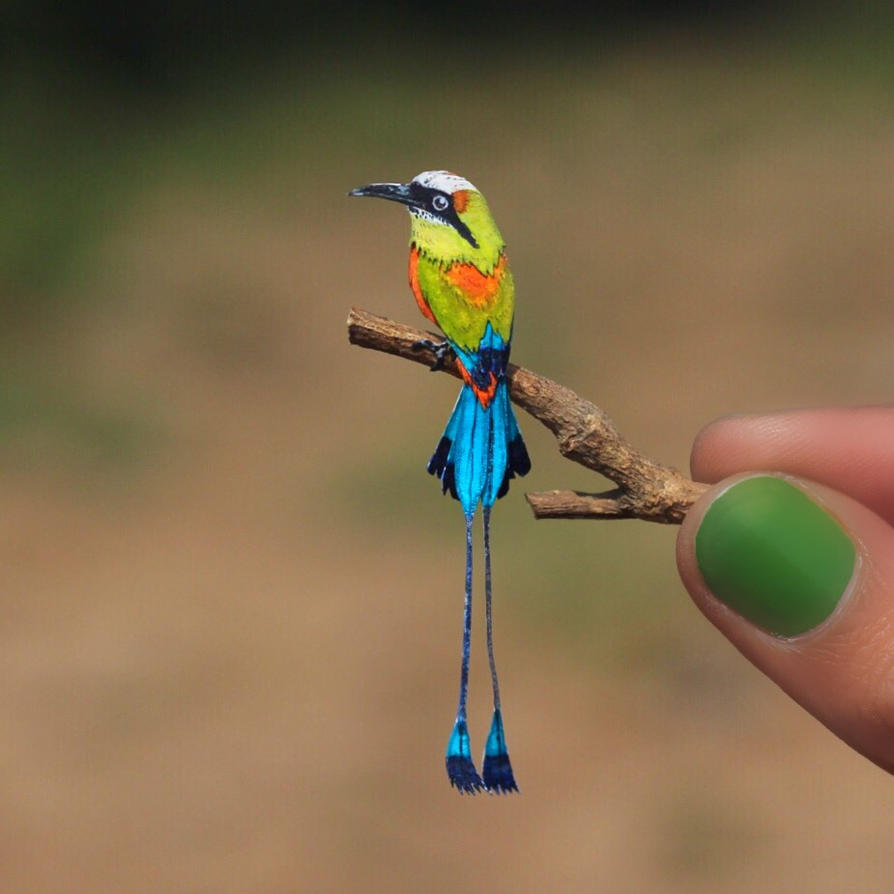 Turquoise-browed Motmot - Paper cut birds by NVillustration