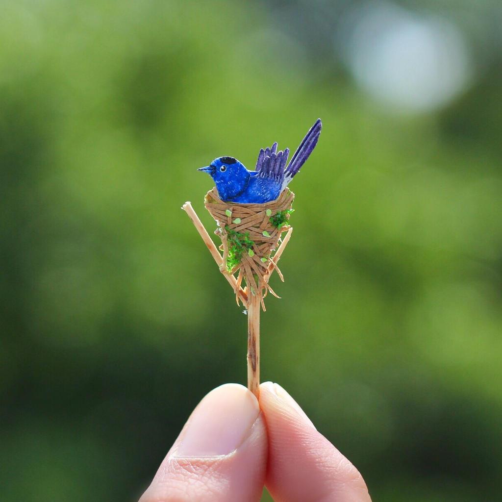 Black-naped Monarch - Paper cut birds by NVillustration