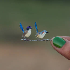 Purple-crowned Fairywren - Paper cut birds