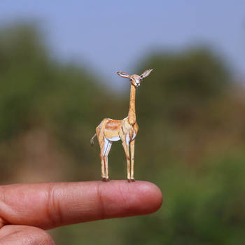 Gerenuk (Giraffe Gazelle)  - Paper cut art by NVillustration