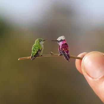 Snowcap Hummingbird - Paper cut bird by NVillustration
